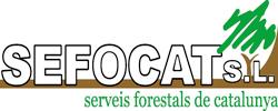 LOGO-SEFOCAT